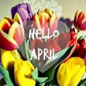 Hello April 🌷💐 Please don't fool me🤭 . . . . #welcomeapril🌸 #april🌷 #helloapril #april #aprilfools #aprilfoolsday #april2021 #pleasebegood🤞🏻 #haveanicemonth #springvibes #springishere #springisintheair #bookstore #psaltoubookstore #psaltou #bookstoreskilkis #kilkiscity